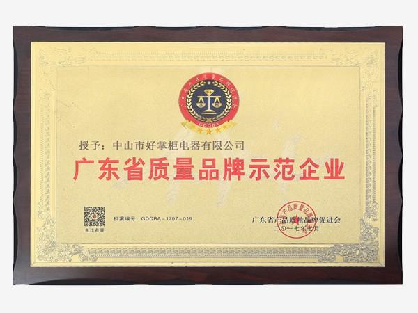广东省质量品牌示范企业